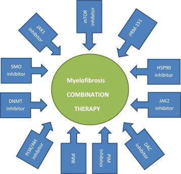 Rationale for combination therapy in myelofibrosis