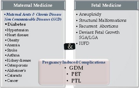 Maternal–fetal medicine – How can we practically connect the