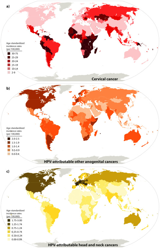 papillomavirus infection prevalence