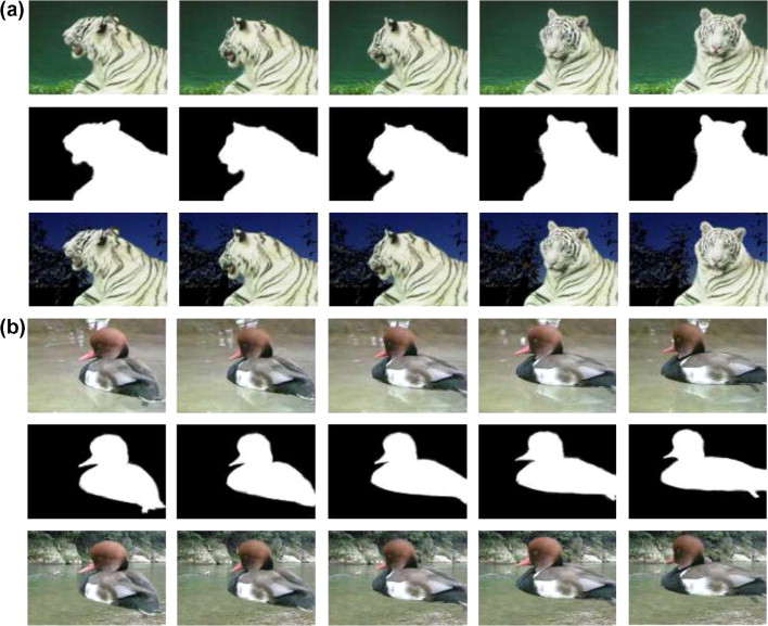 Animated 3d Line Drawings With Temporal Coherence : Temporally coherent video matting sciencedirect