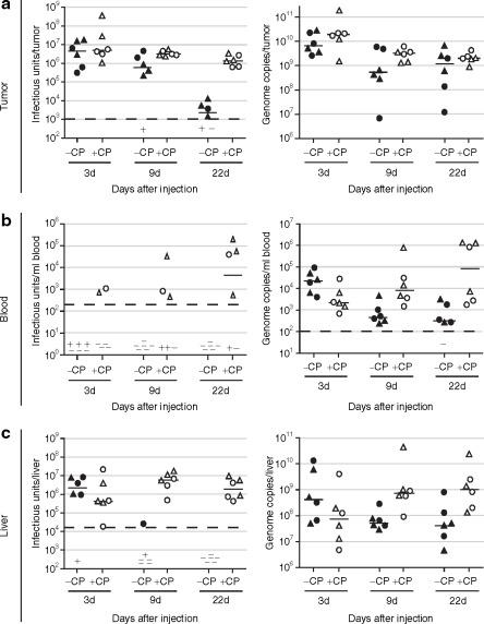 Immunosuppression Enhances Oncolytic Adenovirus Replication