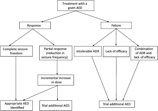 Overview of antiepileptic drug treatment response.