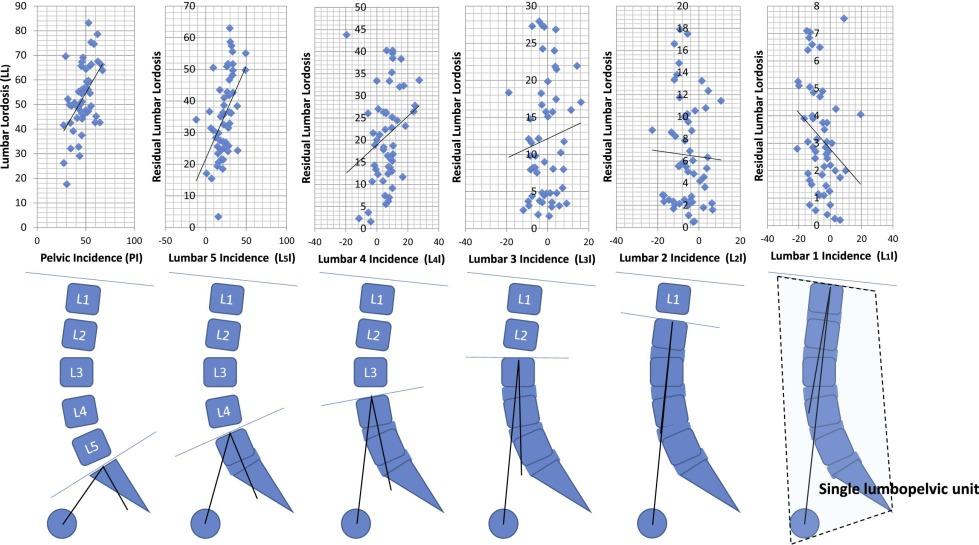 Using Spinopelvic Parameters To Estimate Residual Lumbar Lordosis