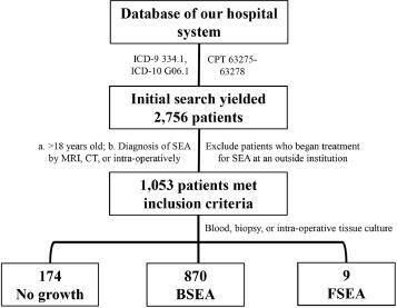 Fungal spinal epidural abscess: a case series of nine