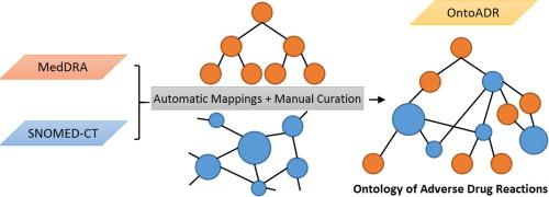 OntoADR a semantic resource describing adverse drug