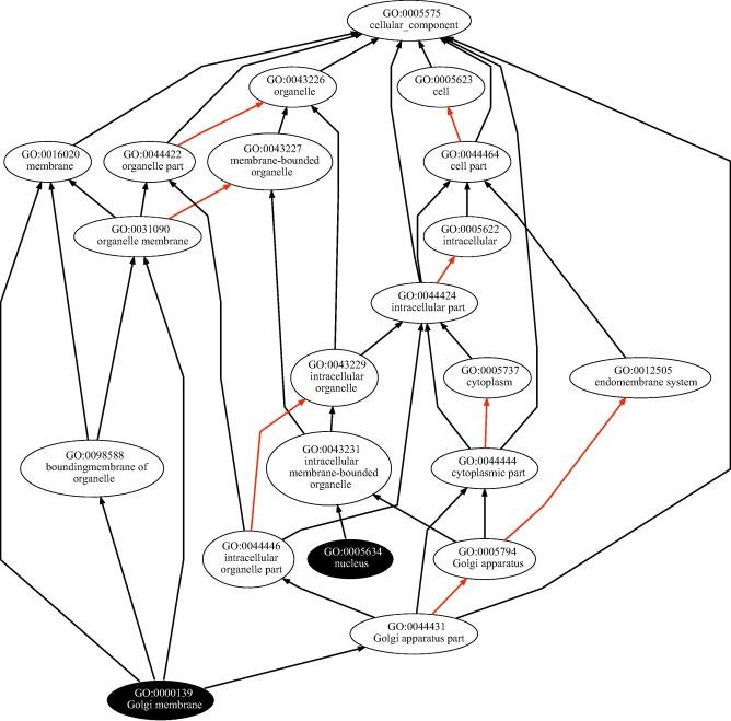 Gfd Net A Novel Semantic Similarity Methodology For The Analysis Of