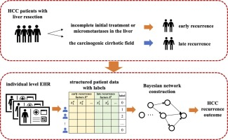 Predicting hepatocellular carcinoma recurrences: A data-driven