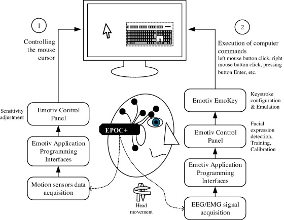 An empirical evaluation of a hands-free computer interaction