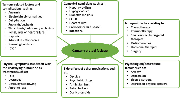 A Practical Approach To Fatigue Management In Colorectal Cancer Sciencedirect