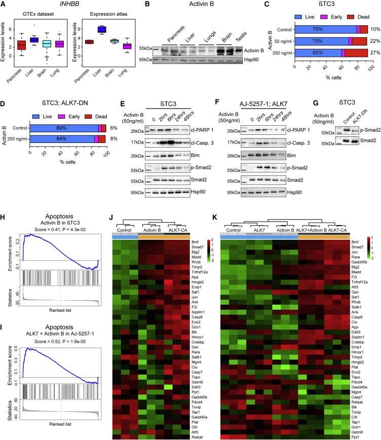 ALK7 Signaling Manifests a Homeostatic Tissue Barrier That