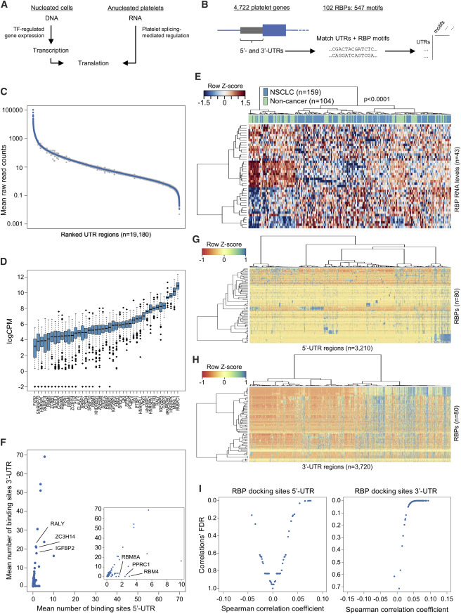 Swarm Intelligence-Enhanced Detection of Non-Small-Cell Lung Cancer