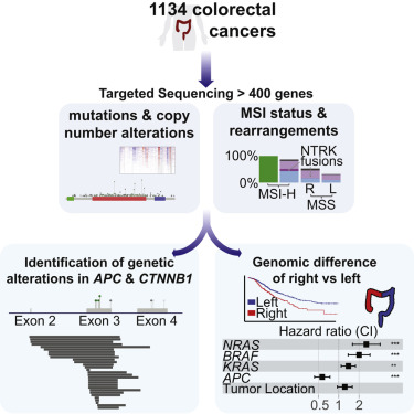 Clinical Sequencing Defines the Genomic Landscape of