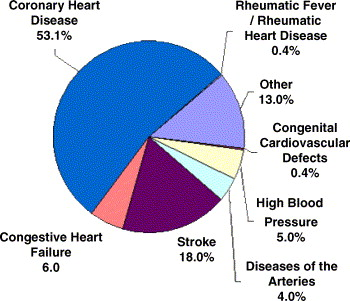 Cardiovascular disease 2005 — the global picture - ScienceDirect