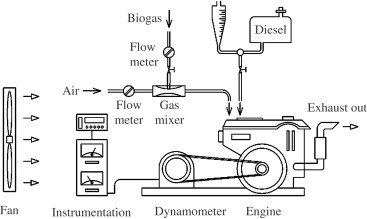 Long-term operation of a small biogas/diesel dual-fuel
