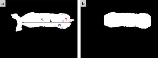 Evaluation of a depth sensor for mass estimation of growing