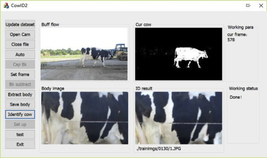 Individual identification of Holstein dairy cows based on