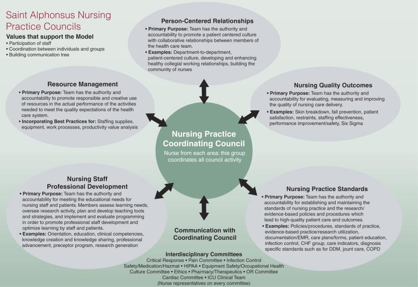 Twelve strategies to enhance nursing practice in a community