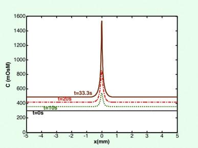 TFOS DEWS II pathophysiology report - ScienceDirect
