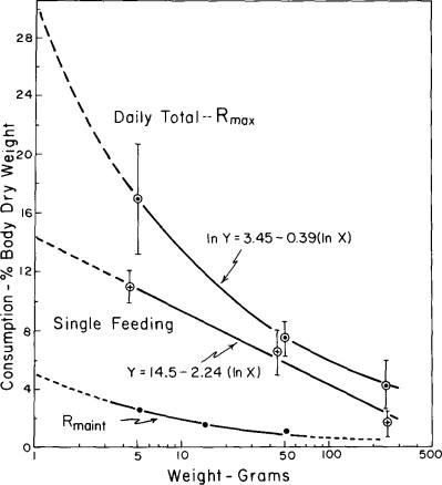Mash Feed - an overview | ScienceDirect Topics
