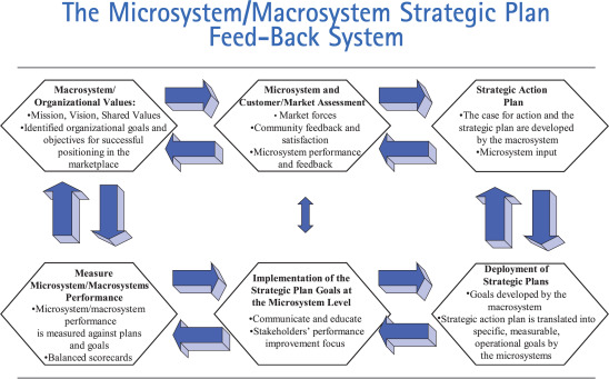 Microsystems In Health Care Part 7 The Microsystem As A Platform