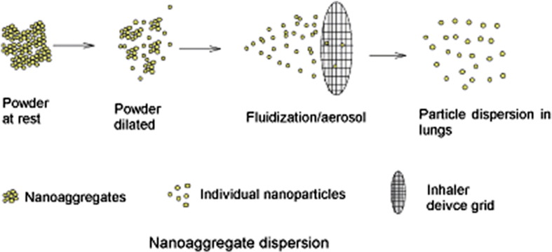 Inhalable nanoparticulate powders for respiratory delivery