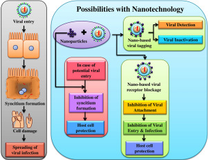 Nano-based approach to combat emerging viral (NIPAH virus) infection