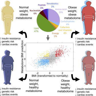Profound Perturbation of the Metabolome in Obesity Is Associated ...