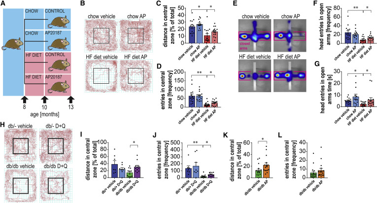 Obesity-Induced Cellular Senescence Drives Anxiety and Impairs