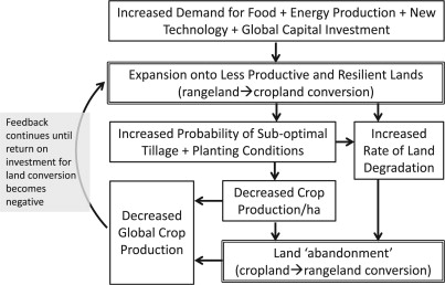 Revolutionary Land Use Change in the 21st Century: Is