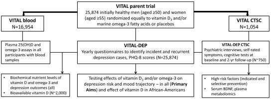 The VITamin D and OmegA-3 TriaL-Depression Endpoint