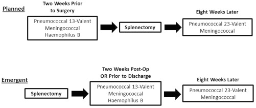 Utilizing pharmacy intervention in asplenic patients to