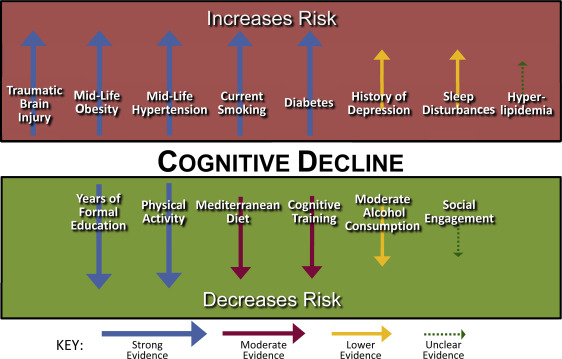 Summary of the evidence on modifiable risk factors for