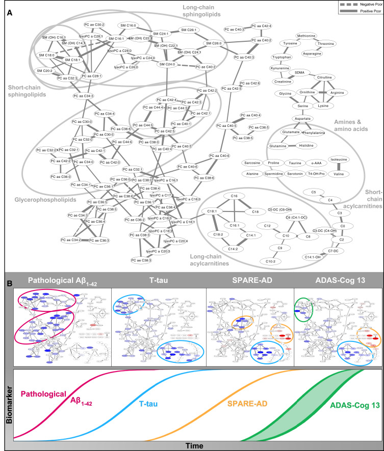 Metabolic network failures in Alzheimer's disease: A
