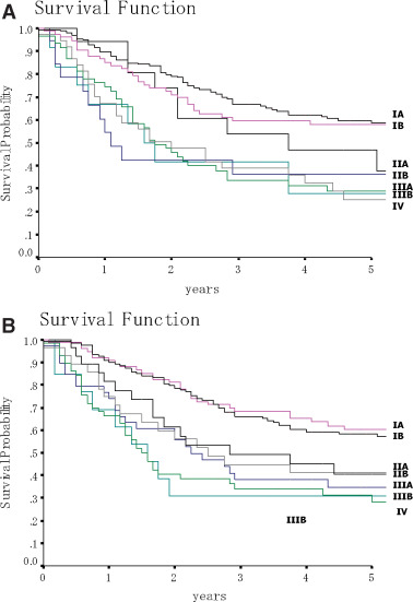 A Japanese Lung Cancer Registry Study: Prognosis of 13,010