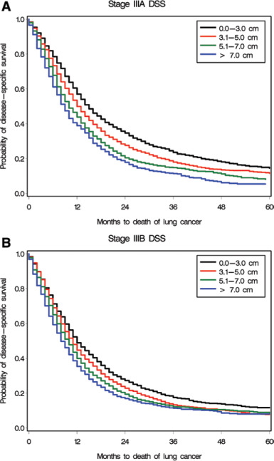 Prognostic Significance of Tumor Size in Patients with Stage