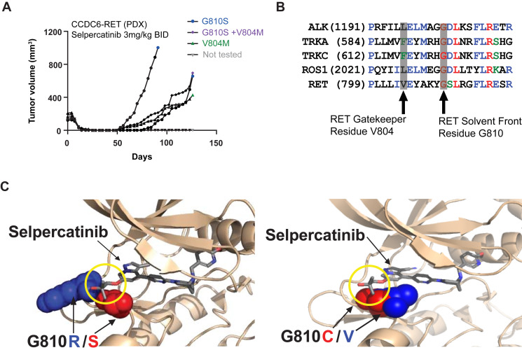 Ret Solvent Front Mutations Mediate Acquired Resistance To