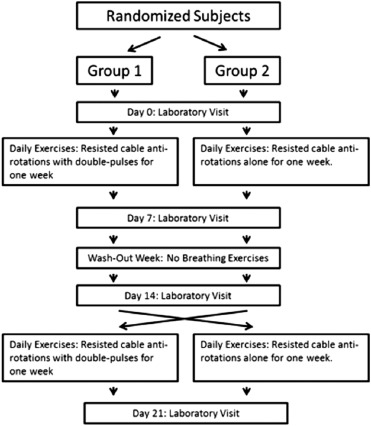 Assessment of Resisted Trunk Rotation Exercise With and