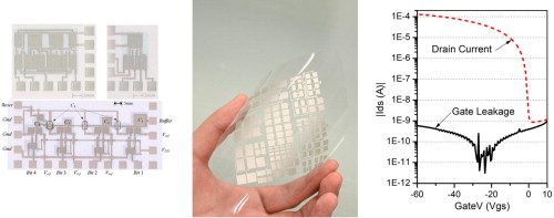 Fully printed electronics on flexible substrates: High gain
