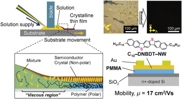 Stable growth of large-area single crystalline thin films from an