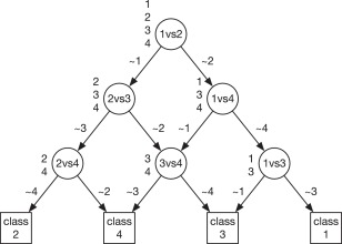 One versus one multi-class classification fusion using optimizing