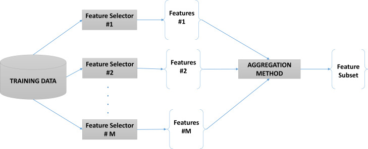 Ensembles for feature selection: A review and future trends