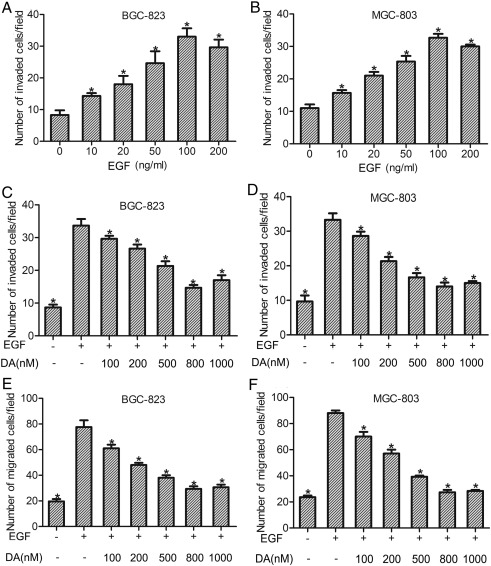 Dopamine D2 receptor suppresses gastric cancer cell invasion and