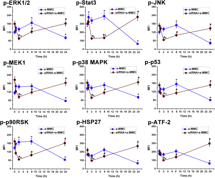LRP1 receptor-mediated immunosuppression of α-MMC on monocytes