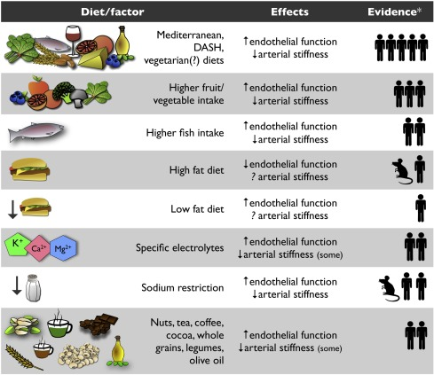 Nutrition And Other Lifestyle Influences On Arterial Aging