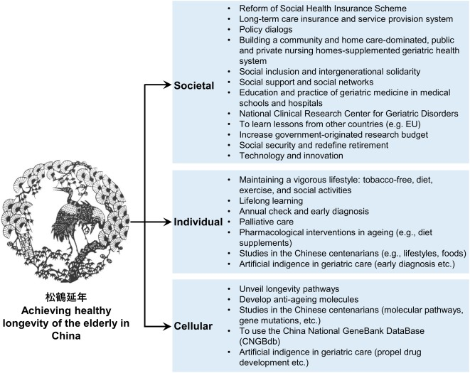 A Research Agenda For Ageing In China In The 21st Century 2nd Edition Focusing On Basic And Translational Research Long Term Care Policy And Social Networks Sciencedirect