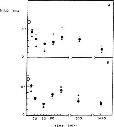 UV C Radiation - an overview   ScienceDirect Topics