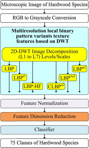 Multiresolution local binary pattern variants based texture