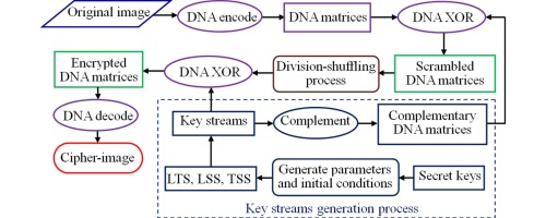 A new color image encryption scheme based on DNA sequences