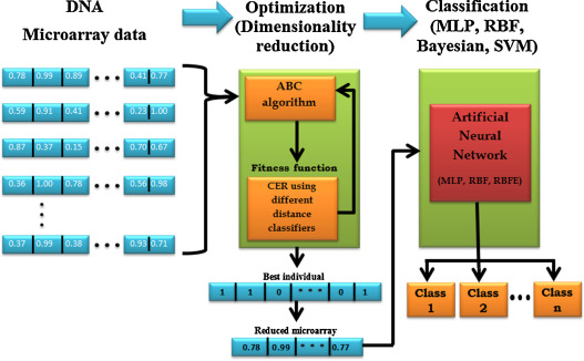 Classification Of Dna Microarrays Using Artificial Neural Networks
