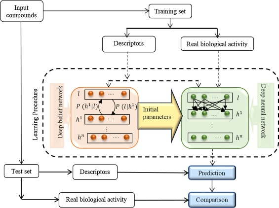 Deep neural network in QSAR studies using deep belief network